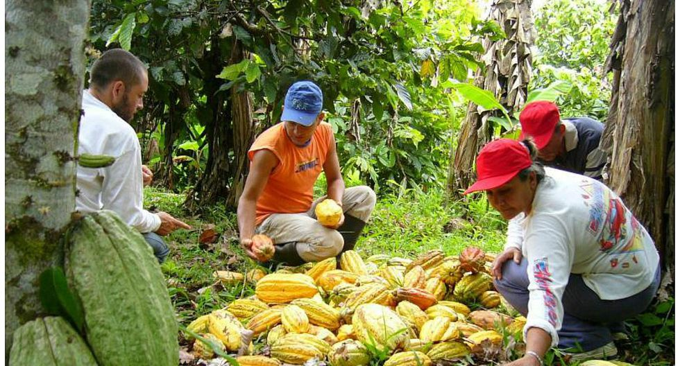ExpoAmazónica generará negocios por S/ 50 millones
