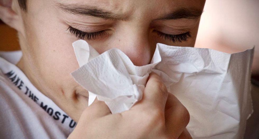 Las personas con alergias tienen un sistema inmunológico más fuerte, según el médico Elmer Huerta. (Foto: Pixabay)