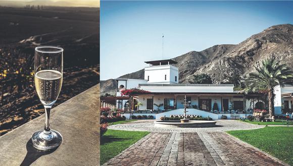 """""""Queirolo es sin duda una de las cinco bodegas más importantes de nuestro país, no sólo en piscos, sino también en vinos. Produce los vinos de la marca Intipalka"""", comenta Jimena Agois, periodista y fotógrafa gastronómica."""