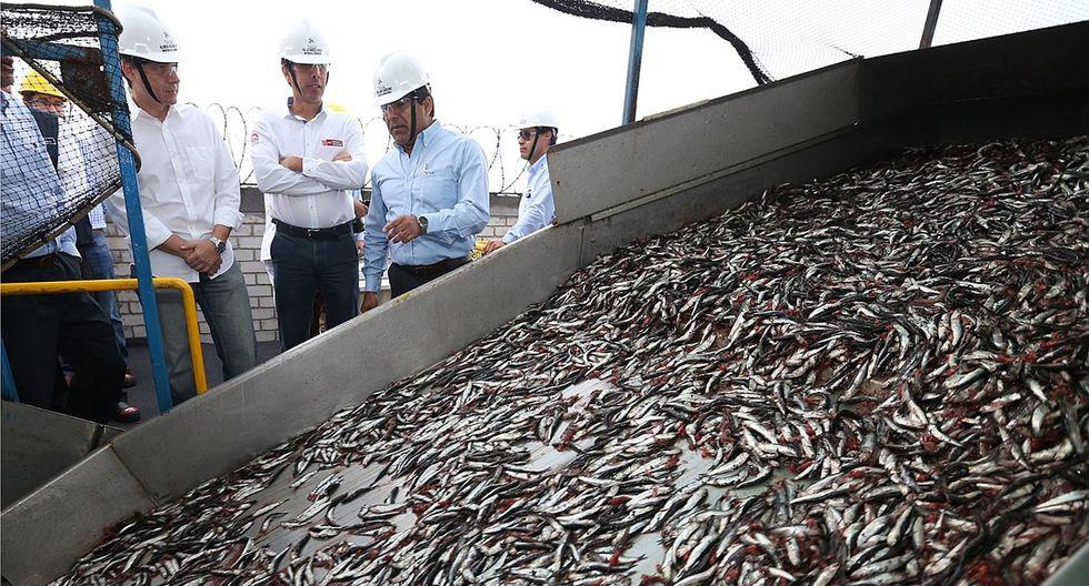 Economía peruana mejoró en noviembre con impulso de la pesca y construcción