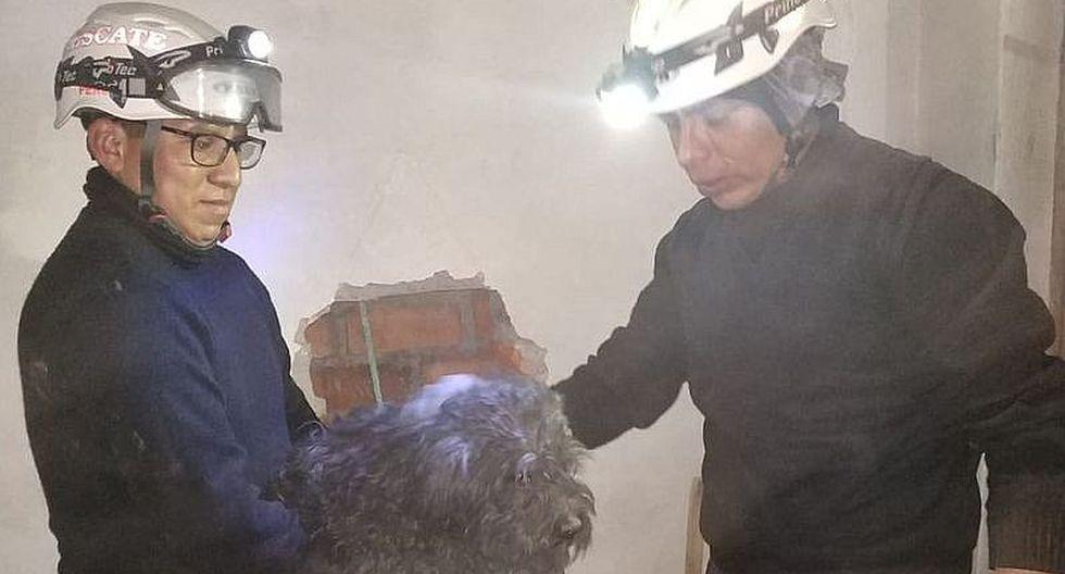 Policías perforan pared de vivienda para rescatar perrito (FOTOS y VIDEO)