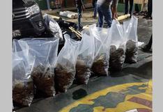 Decomisan media tonelada de droga en Desaguadero