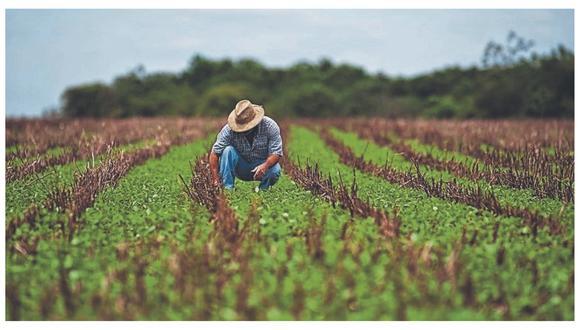 El Gobierno Central dispone medida por un plazo de 60 días para realizar acciones que contribuyan a mitigar el impacto que podría afectar a la agricultura y ganadería.