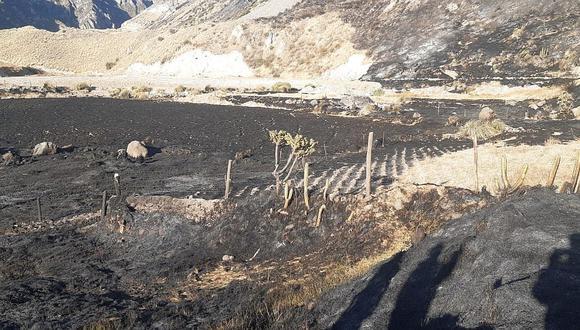 Arequipa: Incendio provoca daños materiales y quemaduras en animales