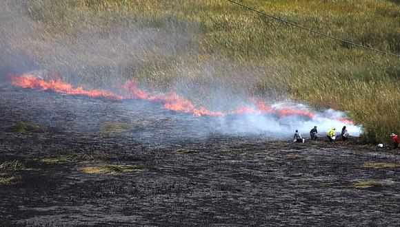 Bomberos confirma que incendio en el Humedal de Huacarpay fue provocado.
