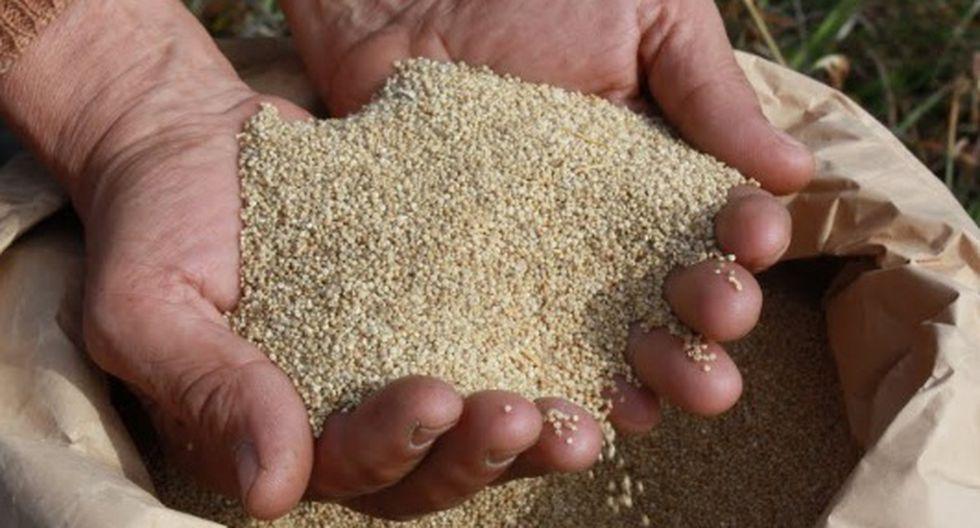 Récord Guinness: Perú preparará ensalada de quinua de 600 kilos
