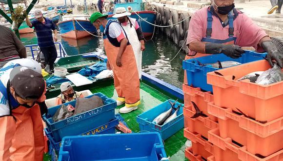 Ofertarán pescados a precios bajos en la plaza Quiñones