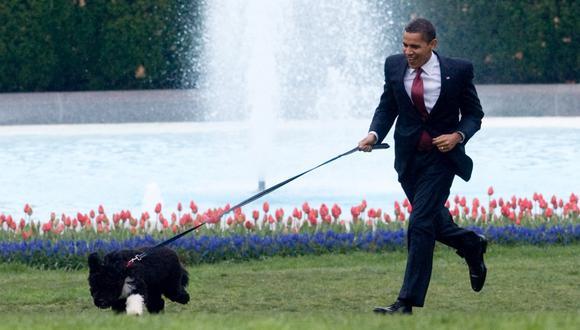 Imagen de archivo del expresidente de Estados Unidos, Barack Obama, paseando con su perro Bo, en el jardín sur de la Casa Blanca, en Washington. (Foto de Saul LOEB / AFP)
