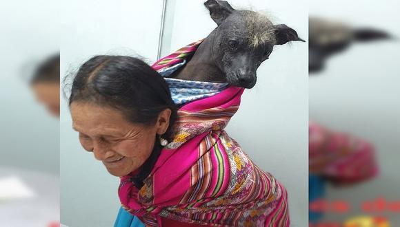 Tierna imagen de mujer y su mascota conmueve las redes sociales (FOTOS)