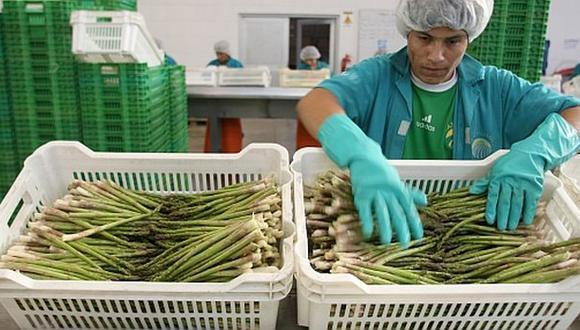 Paltas, uvas ,espárragos y arándanos son los productos agrícolas que más se comercializan desde Perú hacia el Reino Unido. (Foto: GEC)