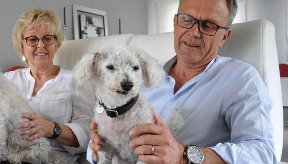 Francia: Familia encontró a su perro extraviado hace once años