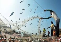 Pesca reporta crecimiento en producción de enero: ¿cuáles son los retos para impulsar al sector?
