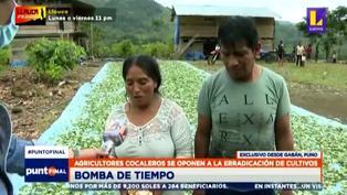 """Agricultores cocaleros contra erradicación de cultivo: """"Antes de que nos maten de hambre, bloquearemos"""""""