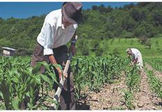 Pese a que se creó hace tres meses, pequeños productores aún no reciben créditos del FAE-Agro