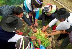 Microempresarios de turismo y artesanos recibirán 51 millones de soles para reactivación económica