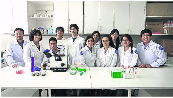 Universidad de San Marcos tendrá el primer laboratorio de clonación de alpacas del mundo