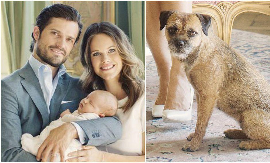 Príncipes de Suecia adoptan un perro e imagen se hace viral [FOTOS]