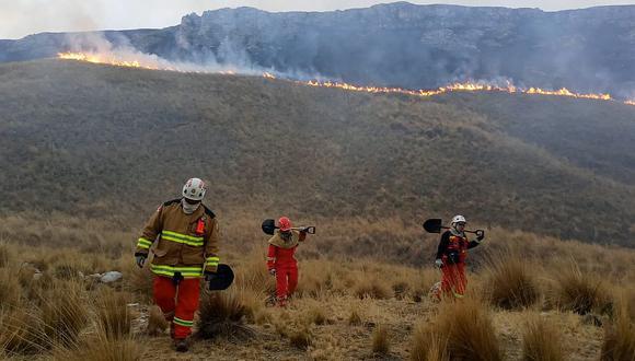 Áncash: COER reporta cinco incendios forestales en menos de 24 horas (Foto referencial: archivo GEC)