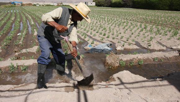 Pese a que sostienen al 80% de la alimentación de los peruanos, carecen de algunas herramientas modernas para su crecimiento. (Foto: GEC)