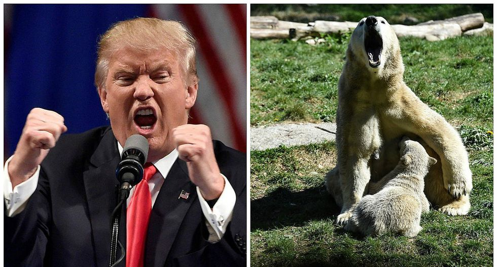 Donald Trump retira a EE.UU. de Acuerdo climático de París y sugiere nueva negociación