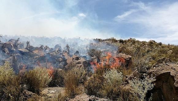 Sin pasto para el ganado por 20 incendios forestales en Arequipa