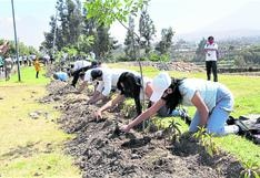 Crearán bosque en homenaje a los héroes fallecidos por la COVID-19 en Arequipa