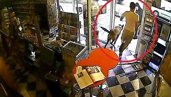 YouTube: Perro se enfrenta a asaltante para salvar a su amo (VIDEO)