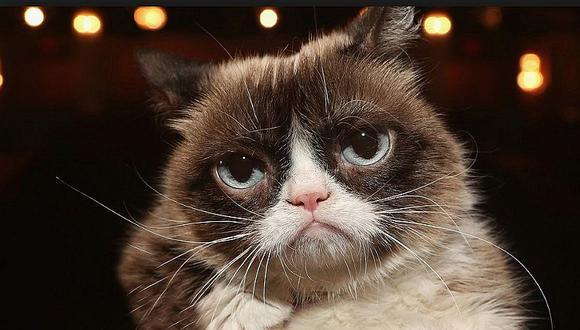 Muere a los siete años Grumpy Cat, la gata gruñona más famosa en internet