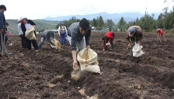 El FAE-AGRO busca asegurar la campaña agrícola 2020-21. (Foto: GEC)