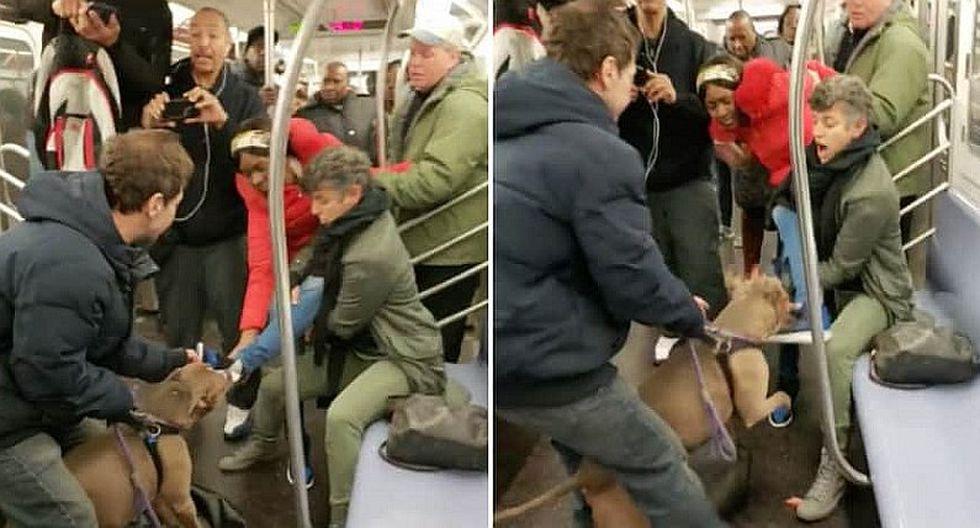 Pitbull muerde a mujer al interior de un tren en EE.UU. (VIDEO)