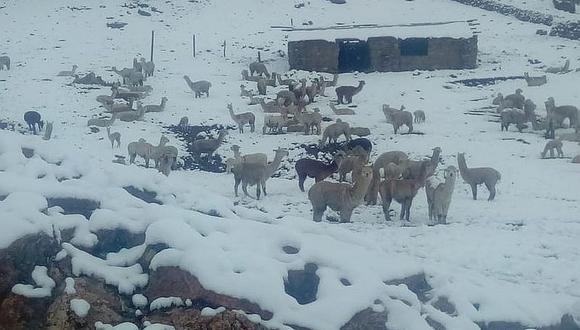 Senamhi advierte sobre lluvias y nevadas en zonas altas