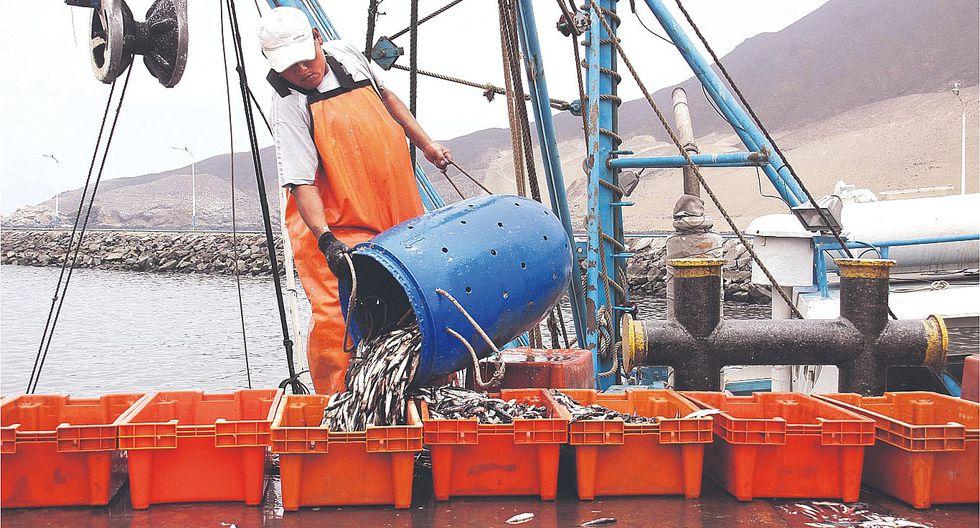 Derechos de pesca serán menores para el consumo humano