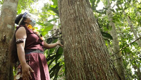 Gracias a este reconocimiento como destino seguro, el Bosque de las Nuwas reabrió sus puertas al público tras quince meses desde el inicio de la pandemia de la covid-19. (Foto: Gobierno Regional de San Martín)