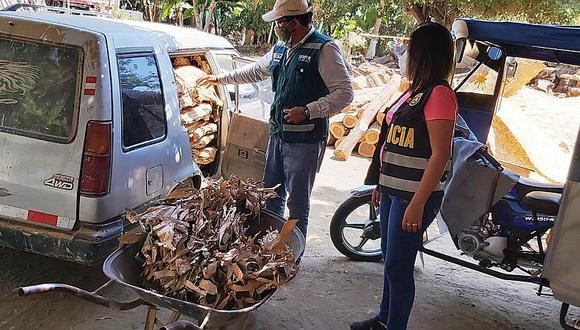 Serfor decomisa 220 trozas de palo santo de procedencia ilegal en Sullana