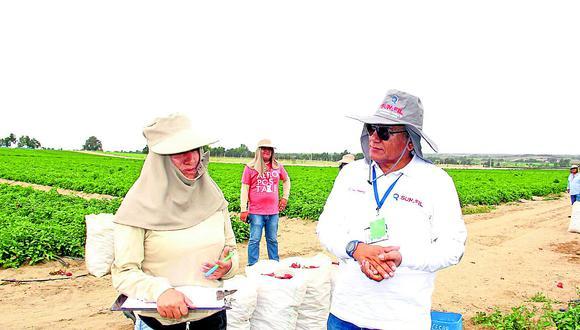Agroindustrias sin protocolo de bioseguridad