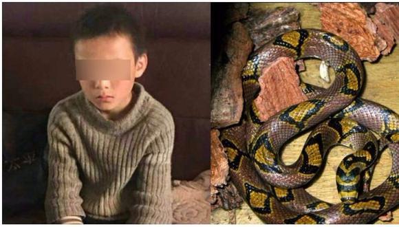 China: niño escapa de su casa y sobrevive 24 días comiendo carne de serpiente