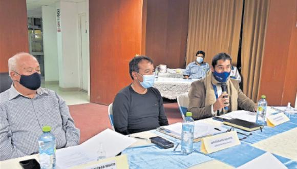 Camaná, Islay y Caravelí no recibieron veraneantes por pandemia. Acuerdo se discutió en reunión de burgomaestres. (Foto: Difusión)