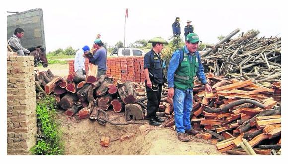Decomisan algarrobo ilegal en tres ladrilleras