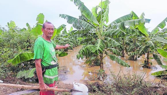 Dirección de Agricultura reporta 110 hectáreas afectadas por la crecida del río Tumbes. En la zona urbana también hay enormes aniegos.