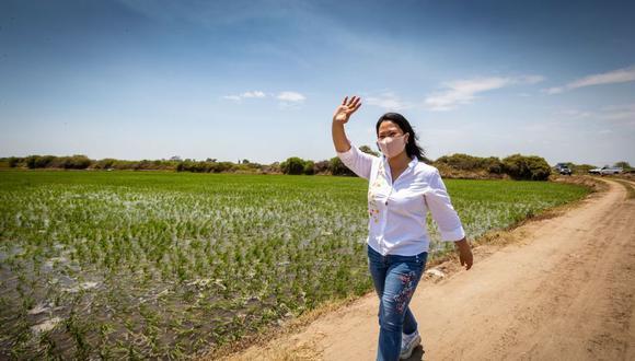 En un hecho muy comentado por propios y extraños, la candidata presidencial de Fuerza Popular, Keiko Fujimori, revivió El ritmo del chino -otrora canción de campaña de su padre, el recluido exmandatario Alberto Fujimori- para intentar apuntalar su alicaída carrera al sillón de Pizarro.