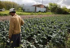 Agricultor advierte presencia partículas minerales en sus cultivos