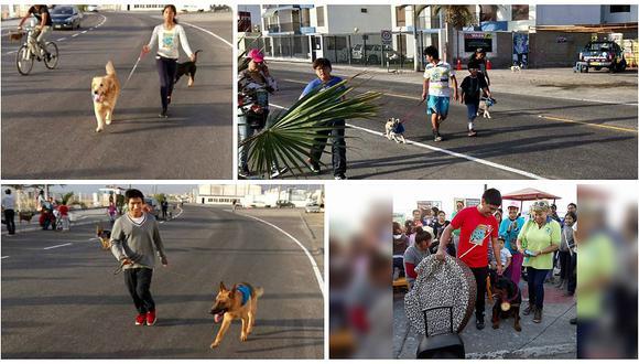Ilo: Mascotas y sus amos corrieron juntos en la Perrotón 2016