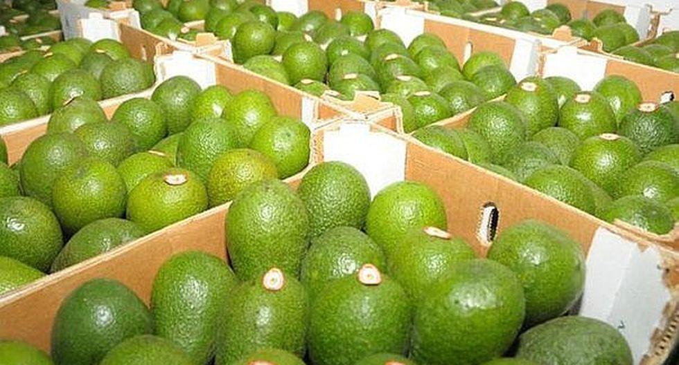 Minagri: Productos agrícolas peruanos llegaron a 148 países