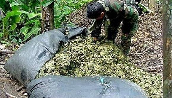 Decomisan más de tonelada y media de hojas de coca en Cusco