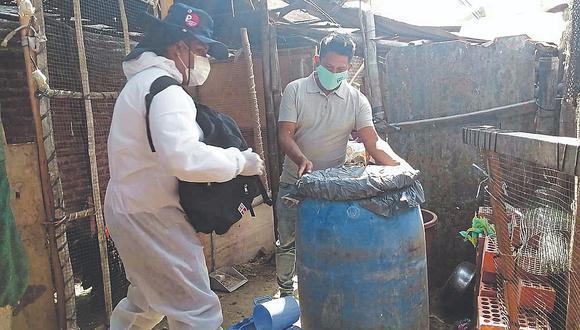 Realizan control focal en el distrito de Castilla para prevenir el dengue, zika y chikungunya