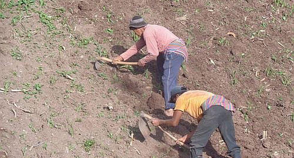 Por sequía piden declarar en situación de emergencia a Churcampa