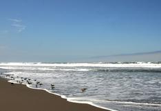 Cierre de las playas en verano será imposible en Arequipa, afirma jefe del comando COVID-19 de Arequipa
