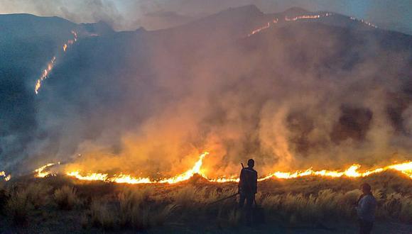 Serfor implementa proyecto sobre alerta temprana de incendios forestales. (GEC)