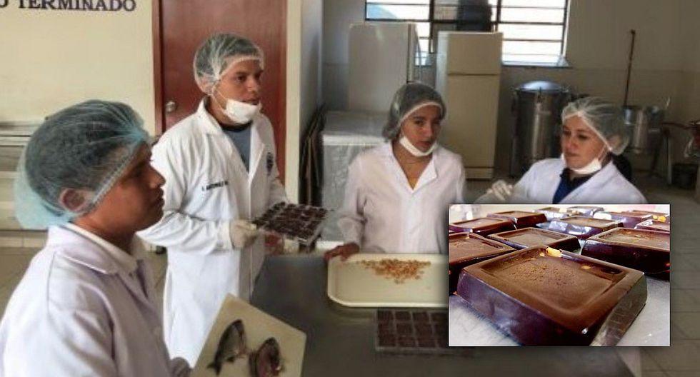 Estudiantes elaboran chocolate a base de pescado para combatir la anemia