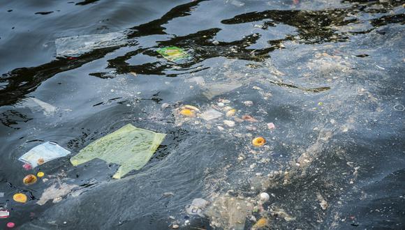 Atentado a la ecología: Plástico está matando la vida marina en el Perú